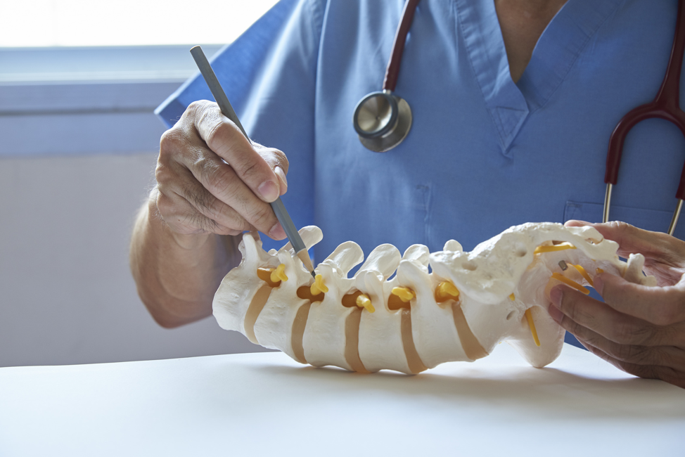 doctor-explaining-bone-structure